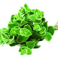 oregao green matsaki